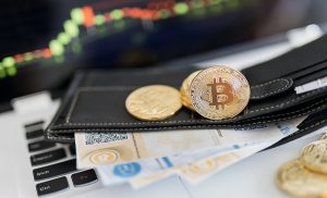 Different Types of Crypto Wallet Every Crypto User Should Know About