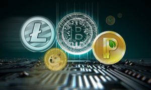 The Rise of the Crypto